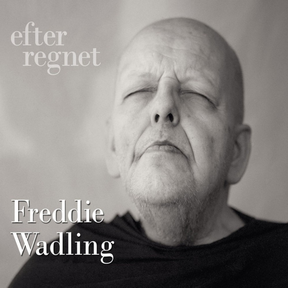 Freddie Wadling